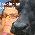 La involucion del ganado